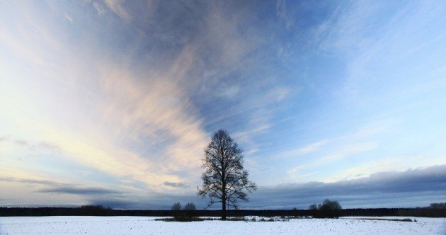 Irish countryside in winter