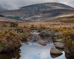 Rare Irish gold is still mined in Ireland today